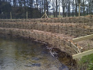 Bespoke Willow Spiling, Erosion Control