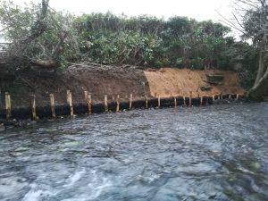 River bank reinforcement day 3, Wales