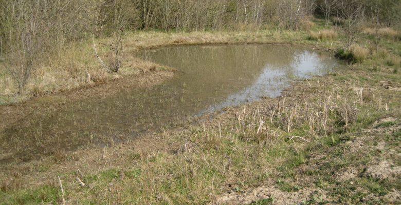 GCN DLL Pond