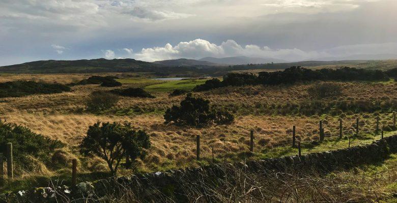 Ecology work on Islay